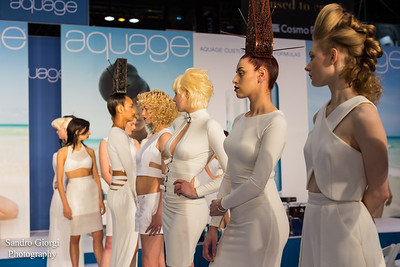 ABS Chicago 2016, Aquage