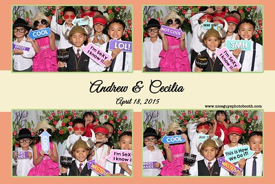 Andrew & Cecilia Wedding - 04.18.15