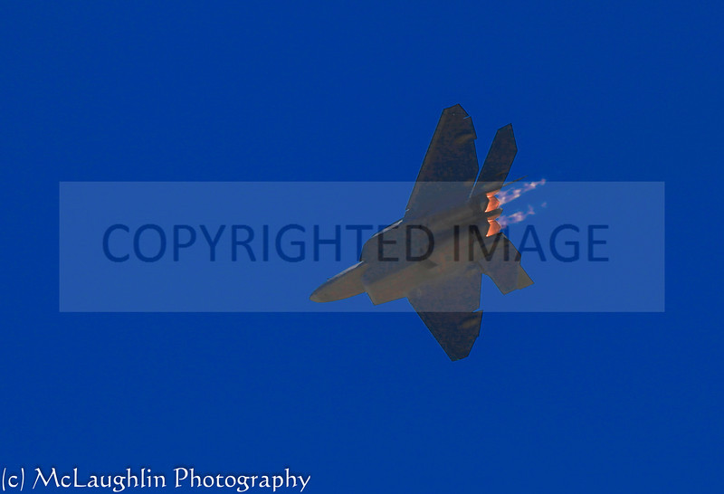 IMG_0222 - Copy