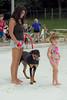 Dog Splash 2012_2012_08_26_9066