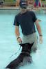Dog Splash 2012_2012_08_26_9126