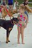 Dog Splash 2012_2012_08_26_9065