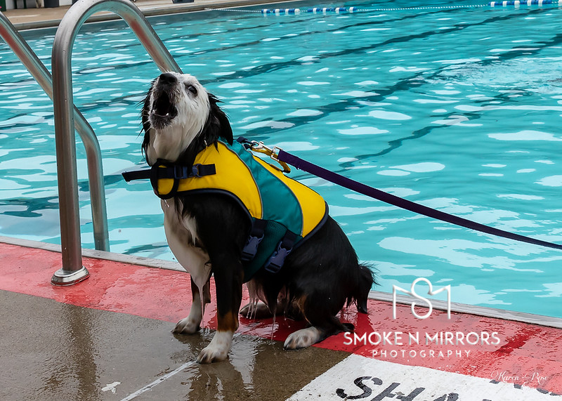 Dog Days 2018 2018-08-18 (120)