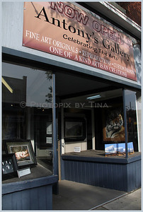 The re-opening of Antony's Gallery in the heart of Whitby, 131 Brock St S, ... http://www.snapwhitby.com/?option=com_sngevents&id%5B%5D=296086&photoId=  July 7, 2011