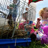 5/14/16 LEOMINSTER-- 3 year old twin sisters  Gabrielle and Annika Mantyla of Leominster hanging with the rabbit's on Saturday during the Apple Blossom Festival at Sholan Farm in Leominster.  Sentinel & Enterprise photo/Jeff Porter