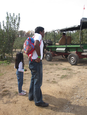 Apple Picking Oct 2012