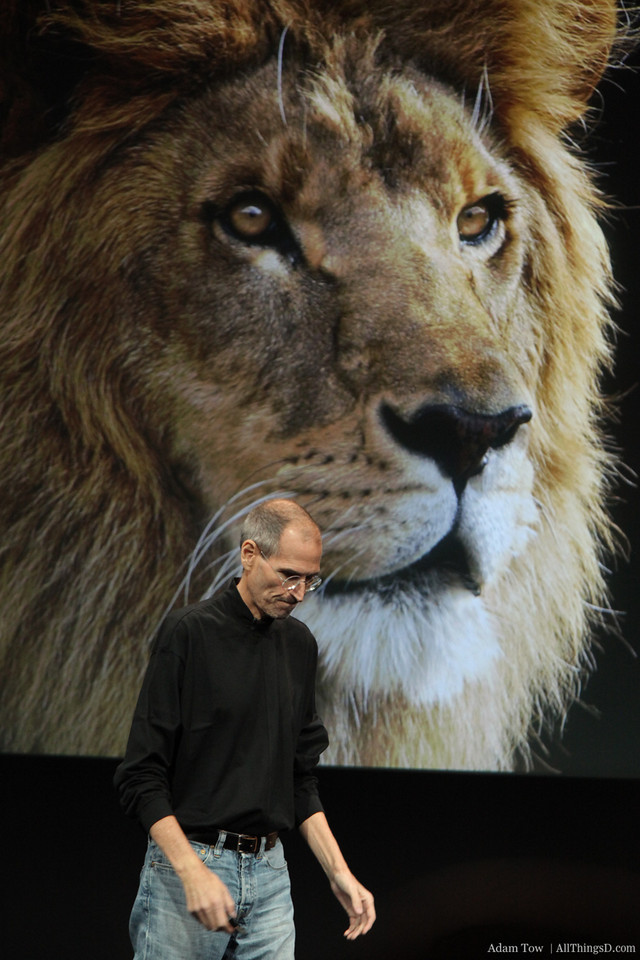 Steve and Lion.