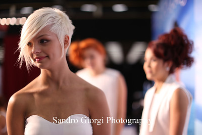 Aquage models on stage.  Aquage artistic Team at Armstrong Mc Call Fashion Focus Hair Show in Corpus Christi; Texas. May 2014. Photo by Sandro Giorgi