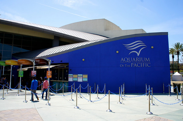 Aquarium of the Pacific - 5/9/14