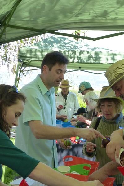 Aqus Petaluma Juggle_In022_03-20-16.JPG