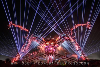 Arcadia Spider - Image courtesy of Ben Daure