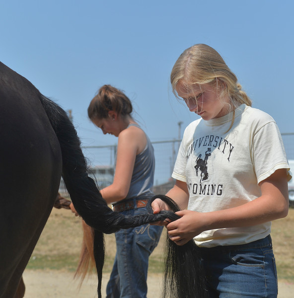 Justin Sheely | The Sheridan Press<br /> Fourteen-year-old Jentry Reid braids a horse's tail during the Sheridan County Fair Friday at the Sheridan County Fairgrounds.