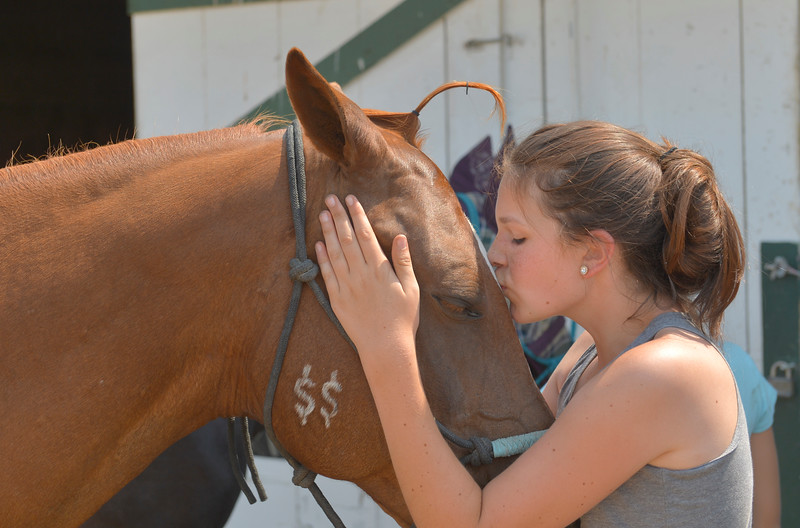 Justin Sheely | The Sheridan Press<br /> Twelve-year-old Alexis McKinley kisses Danny during the Sheridan County Fair Friday at the Sheridan County Fairgrounds.