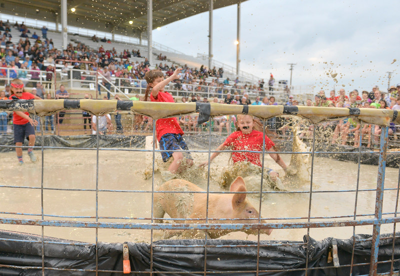 Justin Sheely | The Sheridan Press<br /> From left, Brayden Brutlag, Landon Wood and Noah Newman chase the pig during the annual Pig Wrestling event Saturday at the Sheridan County Fairgrounds. The objective for the teams is to catch the pig from the muddy pit and place it bottom-down into a bucket under the time limit. Winners are determined by the shortest time to complete the task.