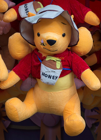 Honey bear 1417
