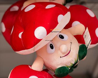 REd Mushroom man 1426