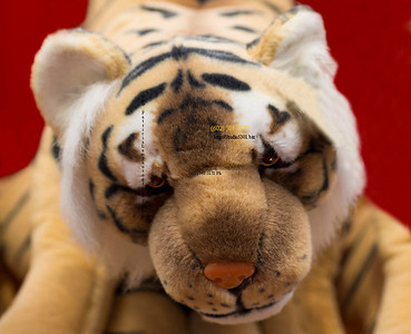 Stuffed tiger prize 1457