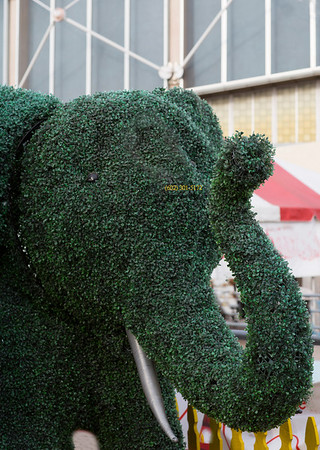 plant covered elephant 1413