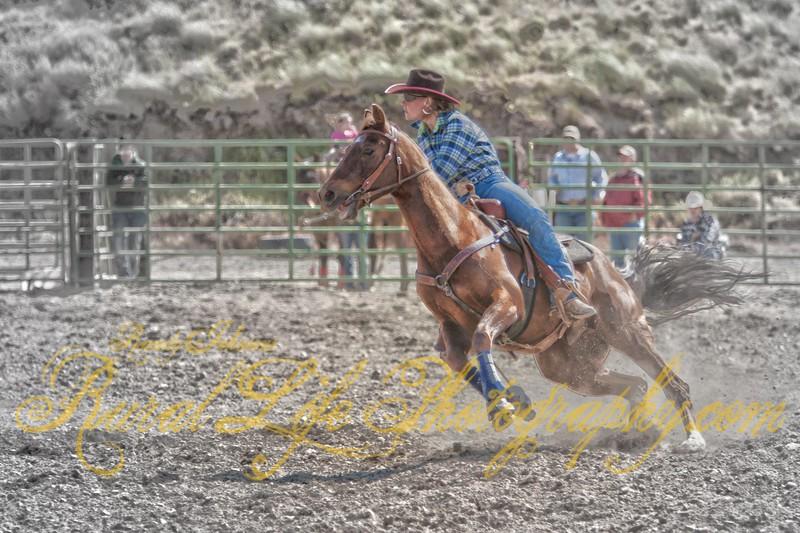 Barrel Racer Miss Courtney Scott