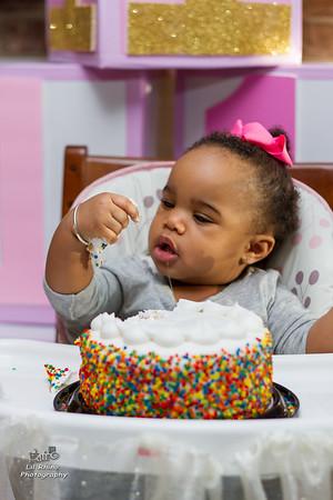 Arya's First Birthday!