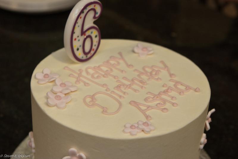 Astrid's 6th Birthday-6834