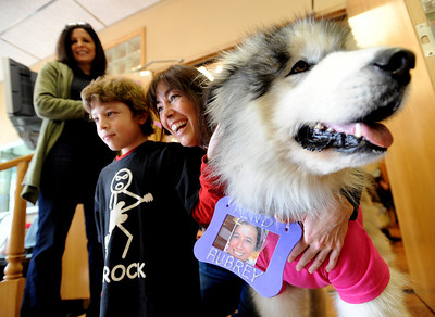 Daniel Potenza, and his mother, Shirley, pose for a photo with Sophie the dog, owned by Stephanie Mallen, top left. Sophie was on hand to support efforts to find Aubrey Sacco. Tapestry Hair Salon of Boulder, held a fundraiser on Sunday for search efforts to find Aubrey Sacco,  a 23-year old CU graduate from Greeley, who is missing in Nepal. For more photos and a video of the event, go to www.dailycamera.com. Cliff Grassmick / November 14, 2010
