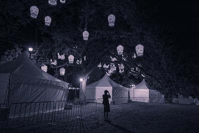 Auckland Lantern Festival, 2015