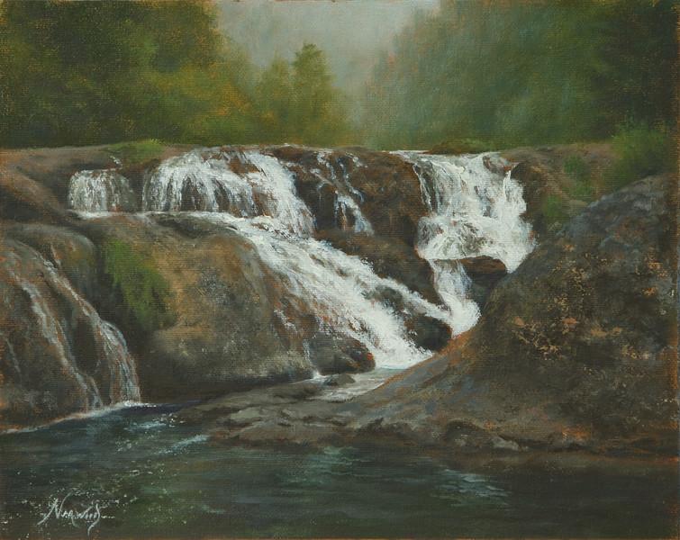 Dugan Falls - Up Close and Personal