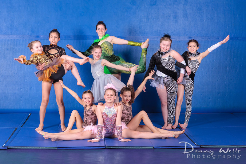 Advanced Performance Gymnastics Team