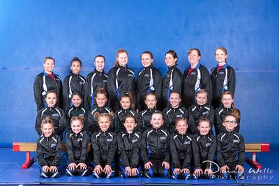 Advanced Performance Gymnastics Team
