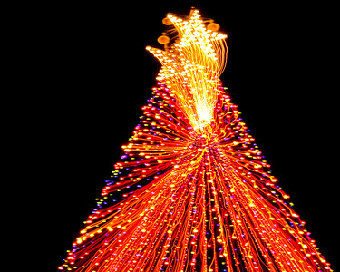 The Zilker Christmas tree of lights (Austin, Texas, 19 Dec 05).
