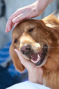 Walk Now for Autism Speaks - Austin - 2011-09-24 - IMG# 09- 011884