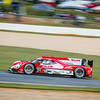 """Cadillac from the DPi Class racing in the IMSA series at the """"Petit LeMans"""" Sports Car Edurance Race.     .................................................."""
