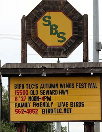Autumn Wings 2011