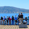 The Crowd to Whale Watch Avila