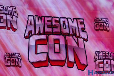 Awesome Con 2016