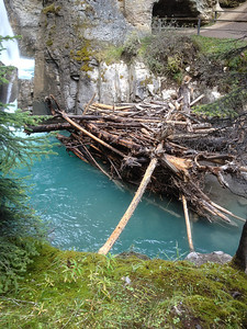 Debris pile below the lower falls in Johnston canyon.