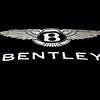 BENTLEY WRAP