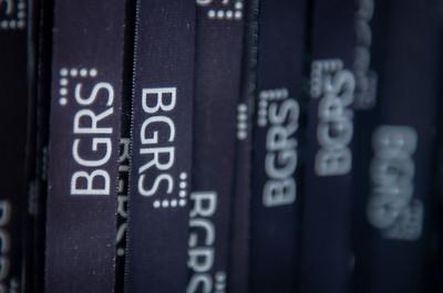 2019 BGRS Supplier Partner Forum - Friday 028