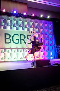 2019 BGRS Supplier Partner Forum - Saturday 300