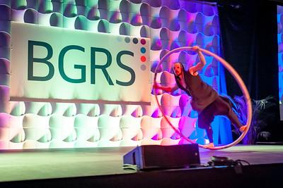 2019 BGRS Supplier Partner Forum - Saturday 292