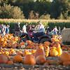 BHURD Pumpkin Patch agents 2018-297