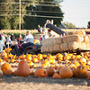 BHURD Pumpkin Patch agents 2018-301