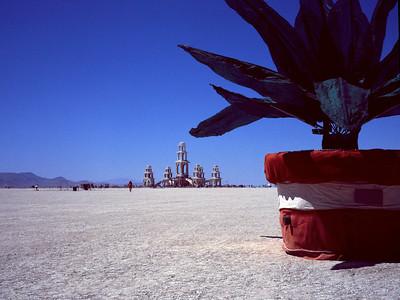 Plant/Temple