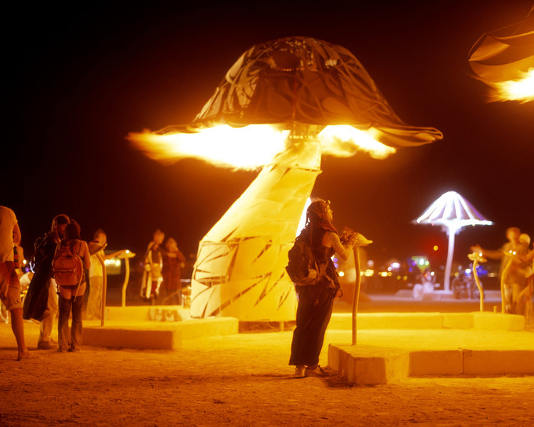 Activating the mushroom fire. Touchpad mushrooms around the big ones activated large amounts of fire.