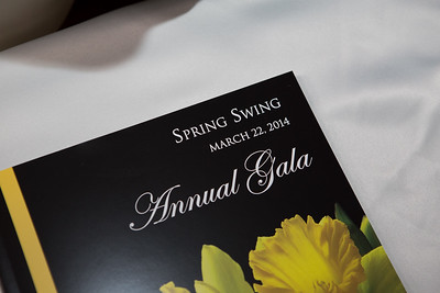 0030_BRMC Spring Swing_032214