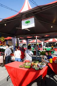 Christmas Market__0012