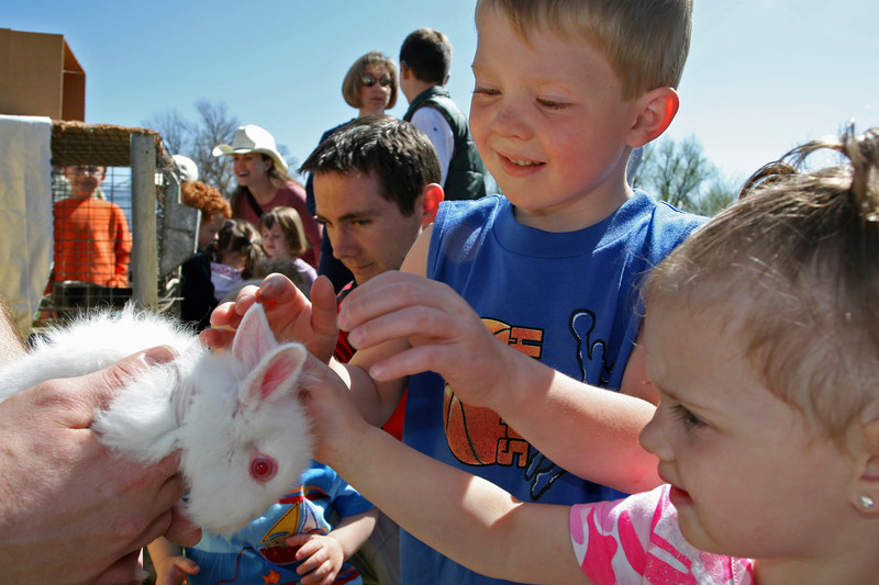 This is a lionhead rabbit that is fascinating these young boys.