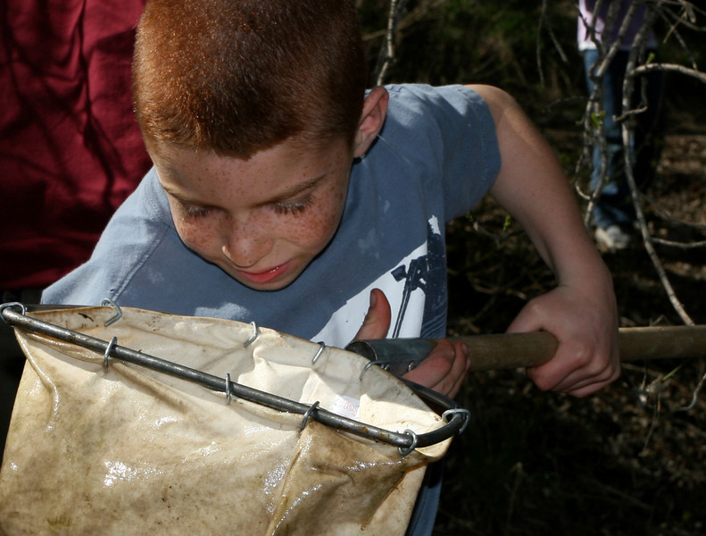A boy examines his net for critters from Rendezvous Creek.