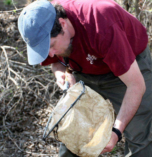 John from Stokes Nature  Center examines his net for baby bugs.